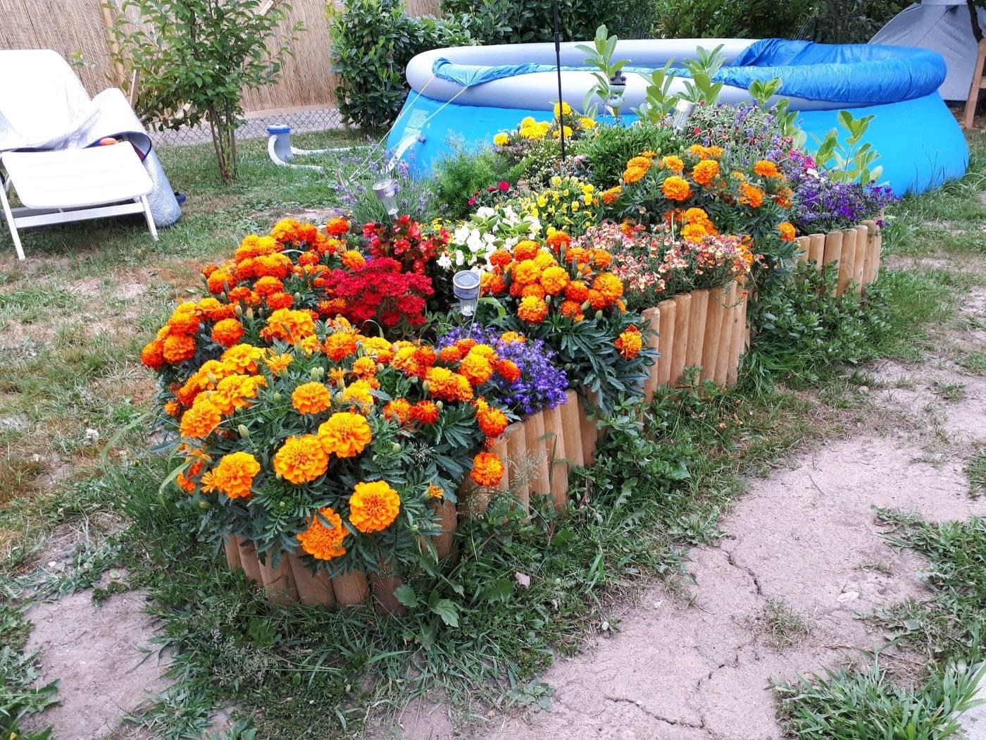 Blumenbeet und ein Swimmingpool